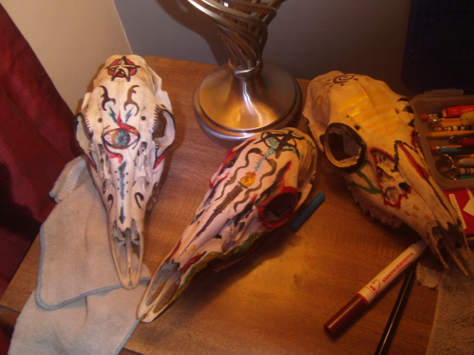 Boiled and painted doe sculls.